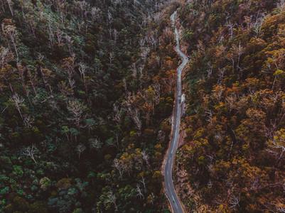 A Drive Around Tasmania 49
