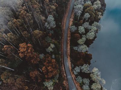 A Drive Around Tasmania 75
