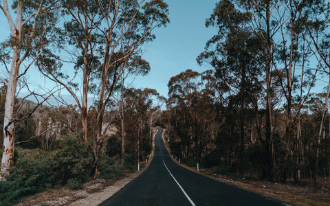 Tasmania 06