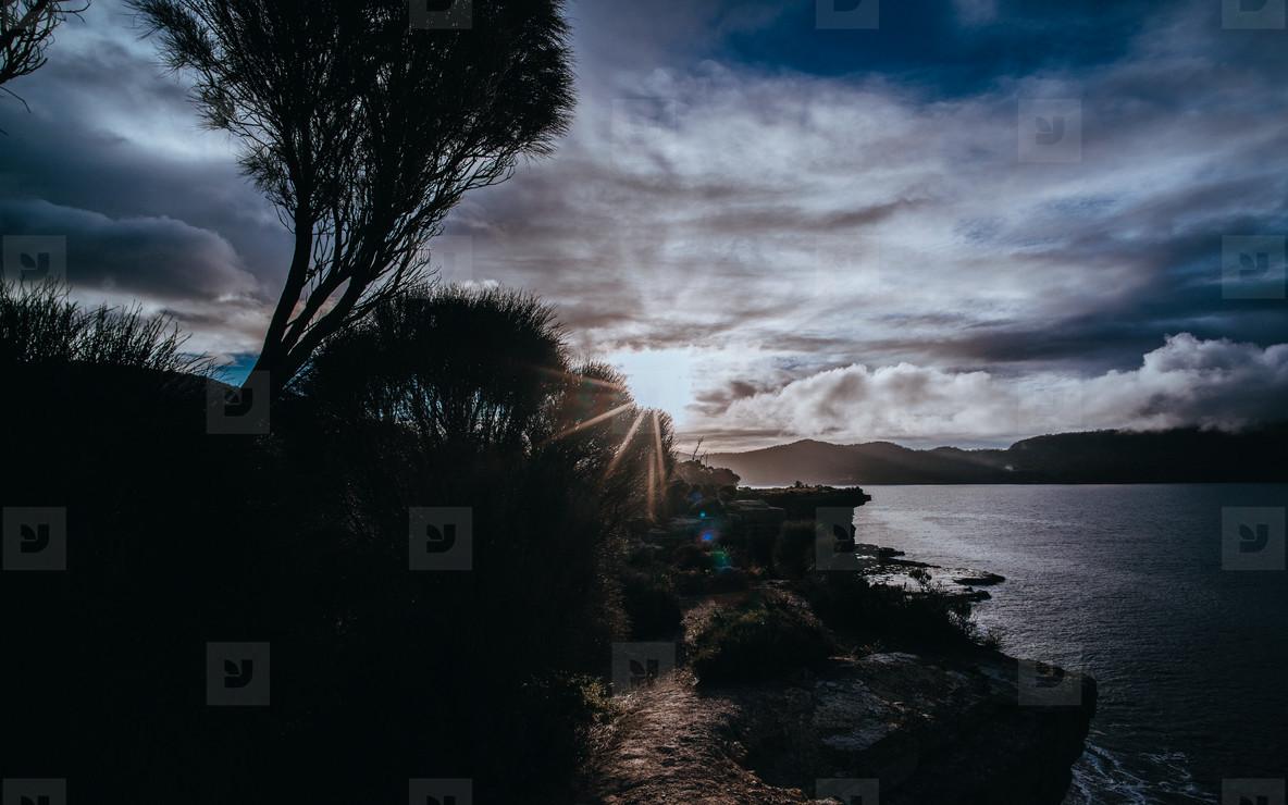 Tasmania 39