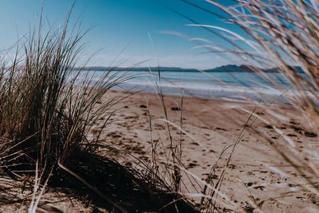 Tasmania 61