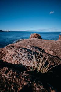 Tasmania 87