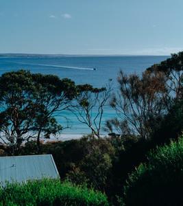 Tasmania 97