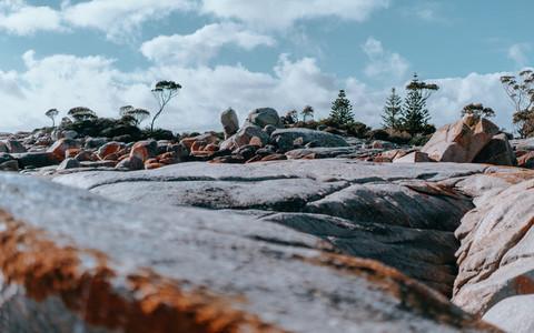 Tasmania 100