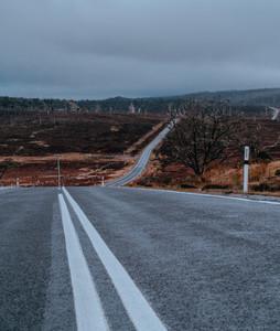 Tasmania 119