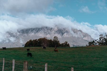 Tasmania 128