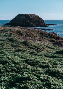 Phillip Island Australia 8