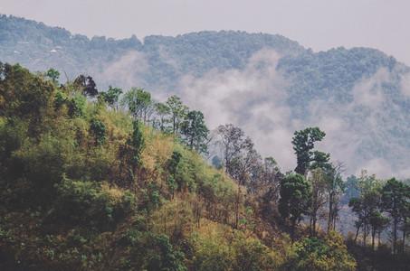 Misty hills Thai countryside