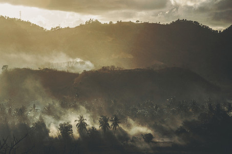 Misty Hills And Jungles