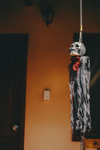 Halloween Skeleton Hanging