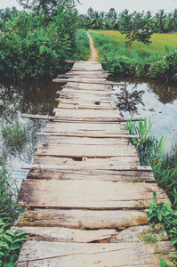 Old Crumbling Wooden Bridge