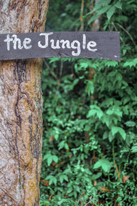 The Jungle sign