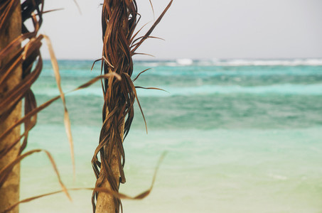 Beach shelter on tropical beach