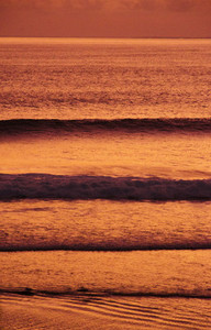 Golden Waves