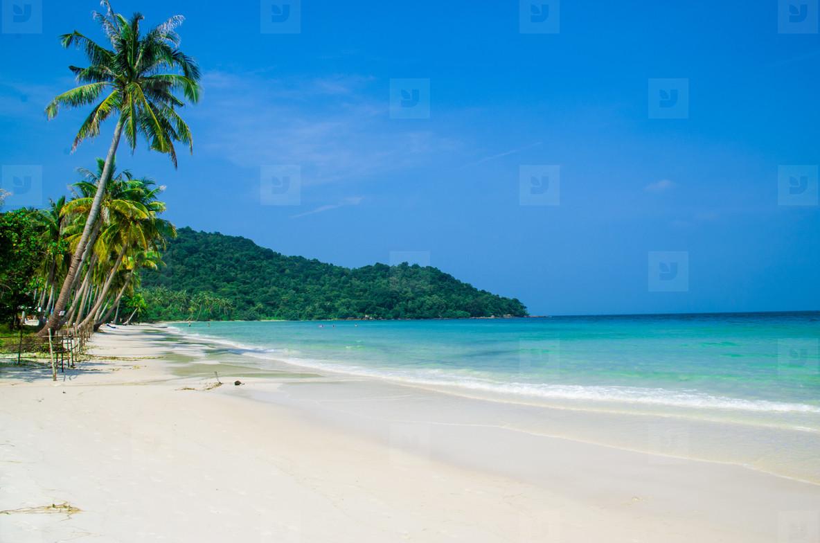 Beautiful Empty Tropical Beach