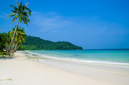 Beautiful Empty Tropical Beach