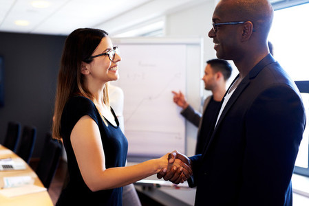Female colleague shaking hands with male colleague