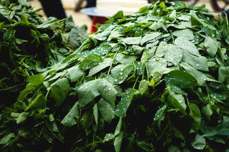 Asian herbs at market