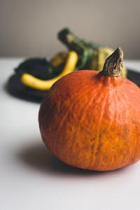 Autumn orange pumpkin