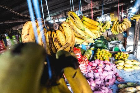 Bananas and other tropical fruit