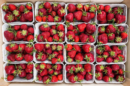 red strawberries at a farmers ma