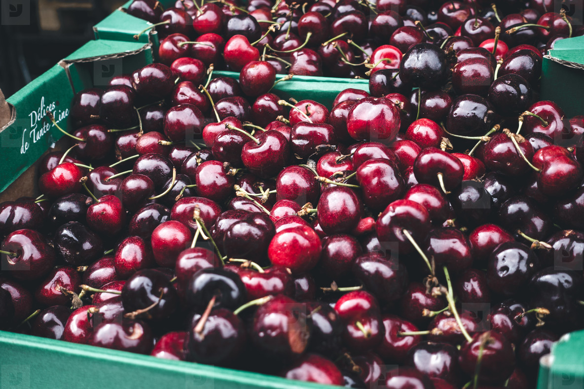 Dark fresh cherries