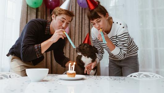 Couple celebrate birthday of pet