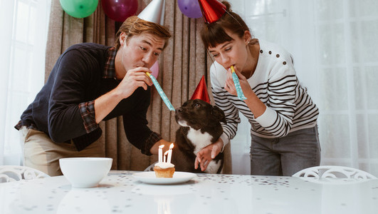 Couple celebrate birthday of pet