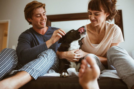 Couple sitting on bed with their pet