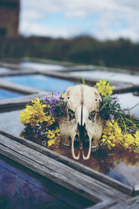 Skull decorated with flowers