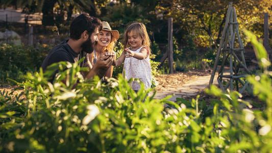 Family having fun in their farm