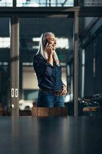 Businesswoman talking to clients over phone