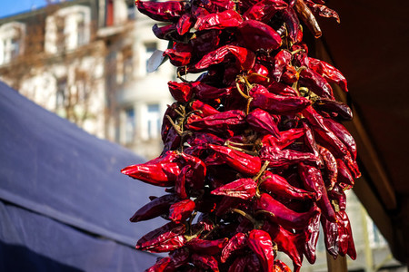 Dried red chillies