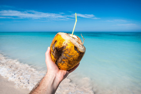 Drinking fresh young coconut