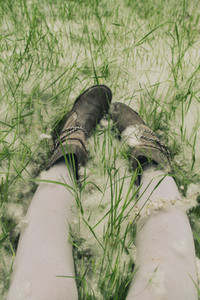 Legs over grass and pollen