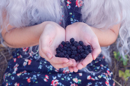 Girl holding blackberries