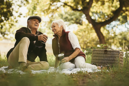 Senior couple sharing few precious memories on picnic