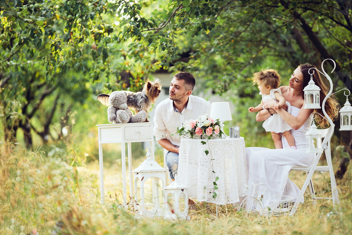 Young family with child at a picnic