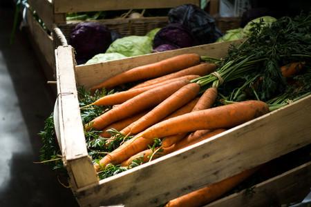 Fresh carrots on farmers market