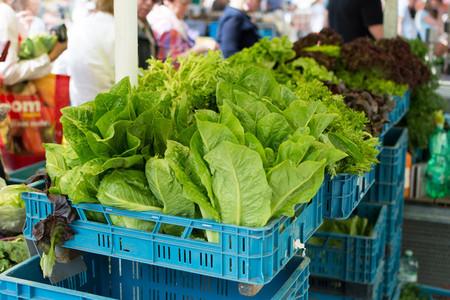 Fresh healthy greens on farmers