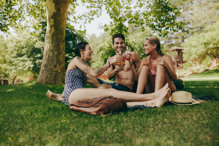Friends toasting beer sitting in a park on a holiday