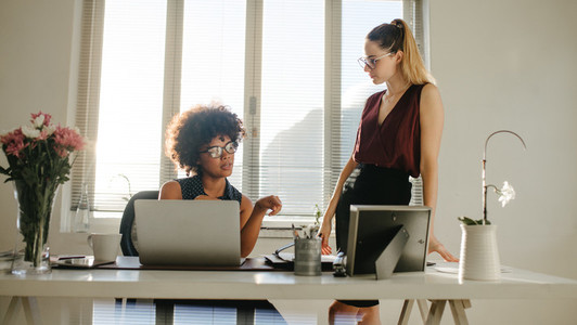 Two businesswoman discussing work in office