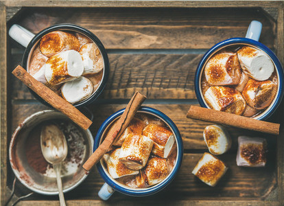 Hot chocolate with cinnamon and roasted marshmallows  copy space