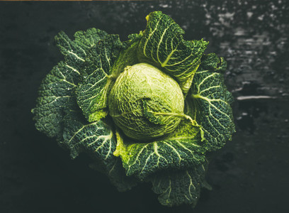 Raw fresh green cabbage over dark background