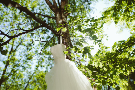 Wedding dress hanging on a tree