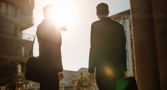 Businessman pointing towards something to colleague standing on