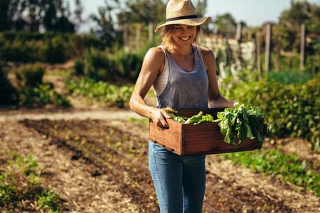 Farmer with freshly harvested vegetables in garden