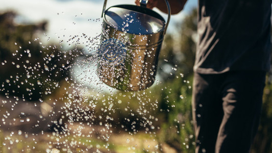 Farmer water crops with can