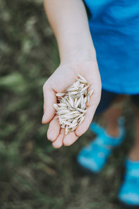 kid explore nature outdoor expierence oats