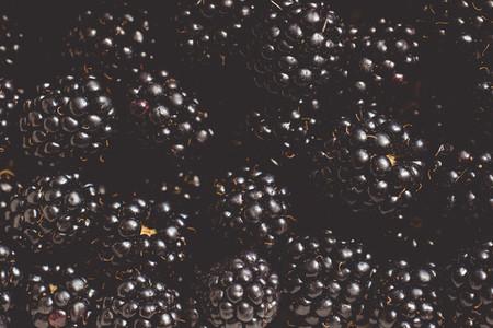 fresh bio blackberry  blueberry